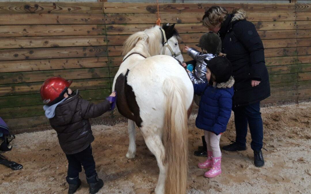 Cycle de poney de la classe de maternelle-CP